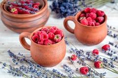 在瓦器的莓构成有干淡紫色土气背景 免版税库存照片