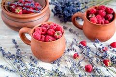 在瓦器的莓构成有干淡紫色土气背景 库存照片
