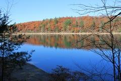 在瓦尔登湖池塘的秋天,一致, MA 11月早晨橡木 库存图片