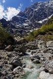 在瓦茨曼断层块东部面孔的冰河小河 库存图片