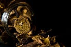 在瓶子的干蘑菇 免版税库存照片