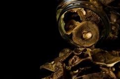 在瓶子的干蘑菇 免版税库存图片