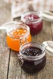 在瓶子的水果的果酱果冻 图库摄影