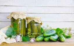 在瓶子的自创罐装黄瓜,腌制的成份 库存图片