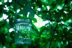 在瓶子的萤火虫 库存照片