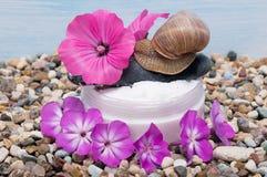 在瓶子附近的桃红色和紫色花有奶油的和在上面,皮肤温泉的蜗牛爬行 库存图片