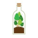 在瓶的一点树 库存照片
