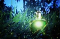 在瓶的不可思议的神仙的尘土魔药在森林里 免版税库存照片