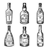 在瓶的不同的酒精饮料 传染媒介例证在手中被画的样式 库存例证