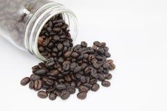 在瓶的咖啡豆在白色背景 图库摄影