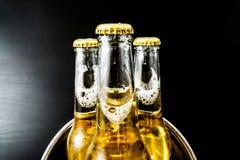在瓶的啤酒有泡影特写镜头的 库存照片