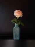 在瓶的玫瑰 免版税库存照片