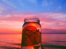 在瓶的生活 库存照片