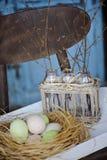 在瓶的第一根春天枝杈在篮子用在巢的复活节彩蛋 免版税库存照片