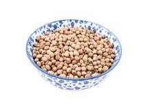 在瓷碗的鸽子的木豆食物 库存图片