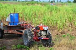 在甘蔗领域的拖拉机和拖车拖曳 库存图片