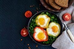 在甜椒的圆环的煎蛋用草本和黑面包-清淡的饮食早餐 免版税库存照片