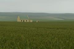 在甜玉米领域, Overberg区,南非的农舍 免版税库存照片