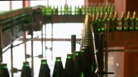 在生产线的啤酒瓶在啤酒厂工厂 在传送带的瓶 影视素材