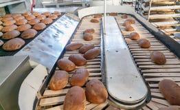 在生产线的被烘烤的面包在面包店 图库摄影