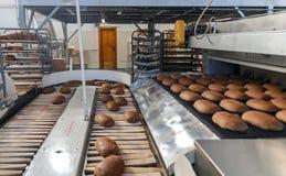 在生产线的被烘烤的面包在面包店 免版税库存图片