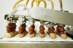 在生产线的鸡蛋 免版税库存图片