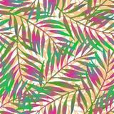 在生动的吹捧颜色的手画热带叶子在白色backgound 向量例证