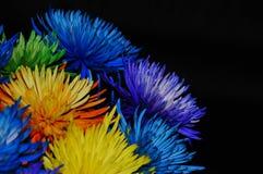 `在生成一个激动人心的图象的背景中享用其中每一生活`五颜六色的花的颜色拍摄与黑暗 图库摄影