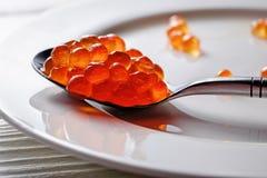 在生来有福的红色鱼子酱在白色背景前面 库存图片