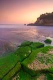 在生苔岩石和海滩印度尼西亚的日落 图库摄影