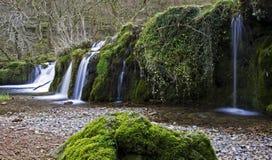 在生苔岩石的瀑布 免版税库存图片