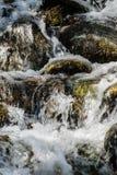 在生苔岩石的行动迷离水 免版税库存照片
