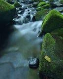 在生苔玄武岩冰砾的亚斯本叶子在山河中,第一种秋天颜色被弄脏的清楚的水。 免版税库存照片