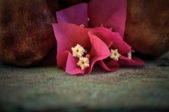 在生锈的盘子和花的石榴果子 库存照片