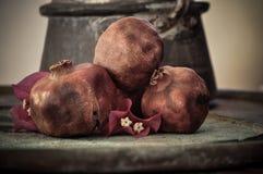 在生锈的盘子和花的石榴果子 免版税库存照片