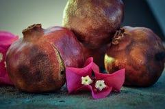 在生锈的盘子和花的石榴果子 库存图片
