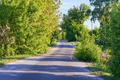 在生长穿过村庄的灌木和树的边的一条柏油路 免版税图库摄影