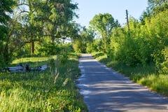 在生长穿过村庄的灌木和树的边的一条柏油路 库存图片