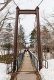 在用与湖、杉木和不生叶的树的雪包括在背景中在Fukidashi的基础上的吊桥停放 免版税库存图片
