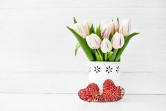 在用两红色心脏装饰的白色花瓶的白色郁金香花束 背景蓝色框概念概念性日礼品重点查出珠宝信函生活纤管红色仍然被塑造的华伦泰 复制空间 免版税库存图片