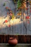 在用五颜六色的叶子盖的墙壁附近的泥罐 图库摄影