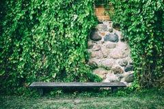 在用常春藤盖的老石墙附近的长凳离开 免版税图库摄影