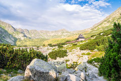 在用花装饰的草甸的木小屋Tatra山的 库存图片