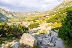 在用花装饰的草甸的木小屋Tatra山的 免版税图库摄影