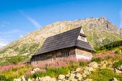 在用花装饰的草甸的木小屋Tatra山的 库存照片