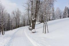 在用雪盖的山的路 33c 1月横向俄国温度ural冬天 自由和运动的概念 免版税库存图片