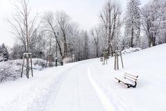 在用雪盖的山的路 33c 1月横向俄国温度ural冬天 自由和运动的概念 库存照片