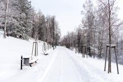 在用雪盖的山的路 33c 1月横向俄国温度ural冬天 自由和运动的概念 免版税库存照片