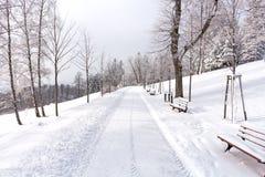 在用雪盖的山的路 33c 1月横向俄国温度ural冬天 自由和运动的概念 免版税图库摄影