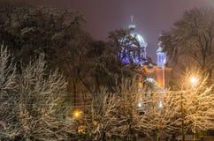 在用雪盖的树中的一个教会 免版税图库摄影